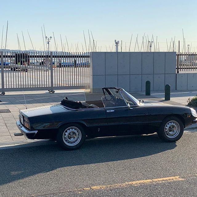 江の島ヨットハーバーで。まだこの時期の朝は静か。#江ノ島ヨットハーバー #アルファロメオ #湘南 #すばな通り #デノアラジン #ヒストリックカーマニア #アルフェスタ #Alfa_Romeo